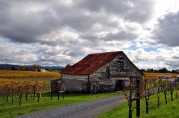 Sonoma Rustic Barn