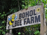 Article published on Travelhoppers — 'Buzzin' in Bohol'